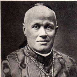 Cardinale Marchetti Selvaggiani.
